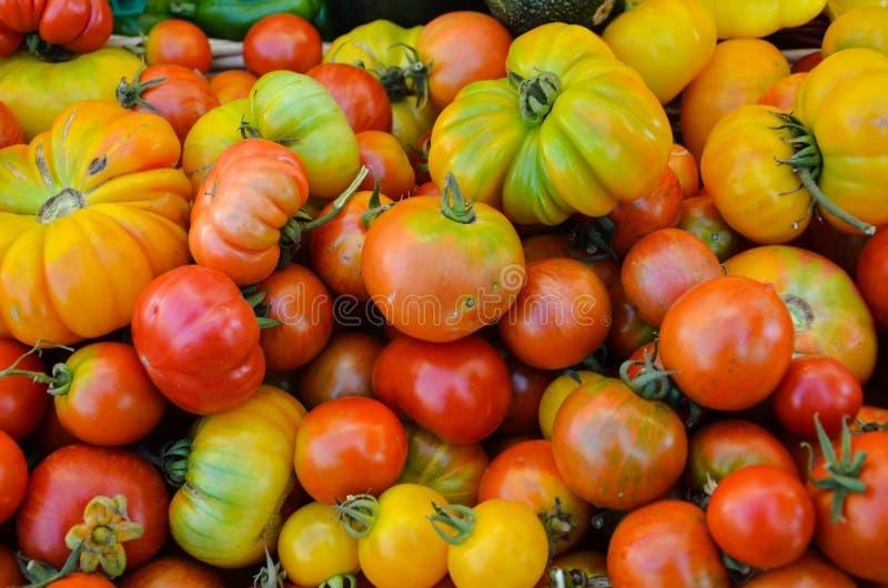 Heirloom Tomatoes. Multi-hued Heirloom Tomatoes Displayed at a Farmers Market stock image