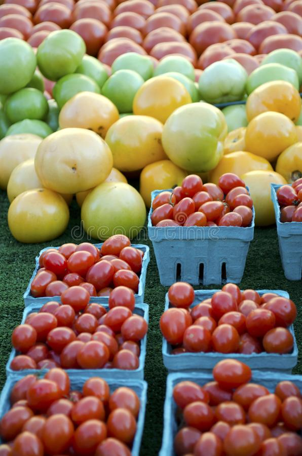 Heirloom Tomatoes. A variety of colors and shapes of heirloom tomatoes for sale at the outdoor farm market royalty free stock photos