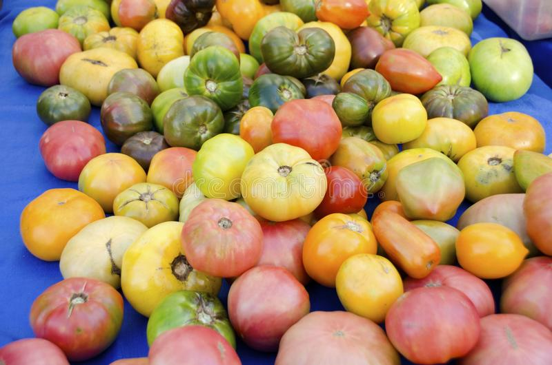 Heirloom Tomatoes. In variety of colors and shapes for sale at the outdoor farm market stock image