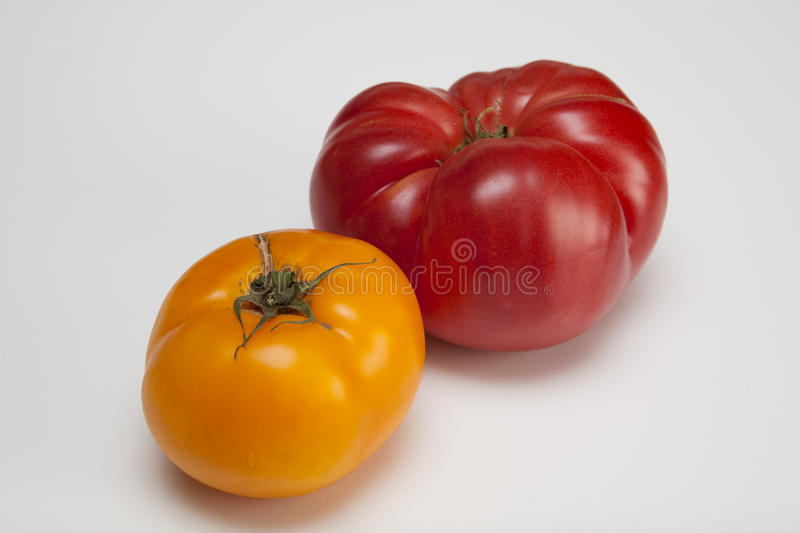 Heirloom Yellow Red. Yellow and red heirloom tomatoes royalty free stock image