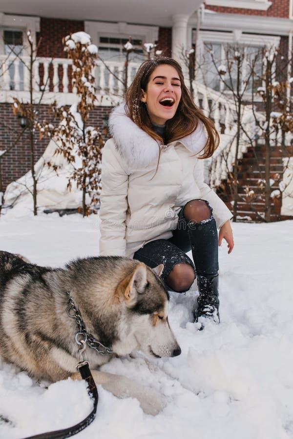 Heiserer Hund, der auf Schnee während langhaariges Mädchen lacht auf Hintergrund liegt Angespornte europäische junge Dame in zerr lizenzfreies stockbild