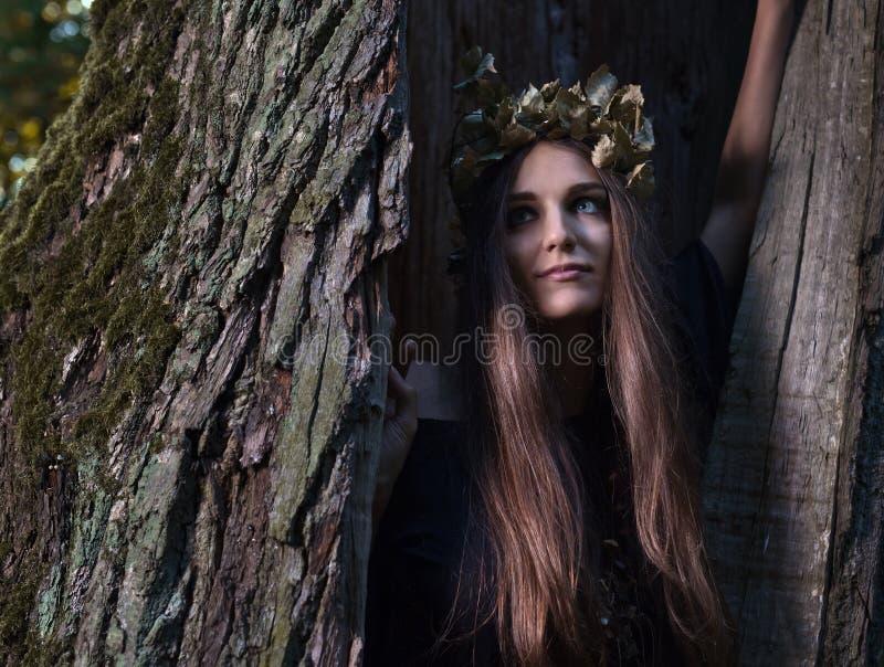 Heks in donker bos royalty-vrije stock foto