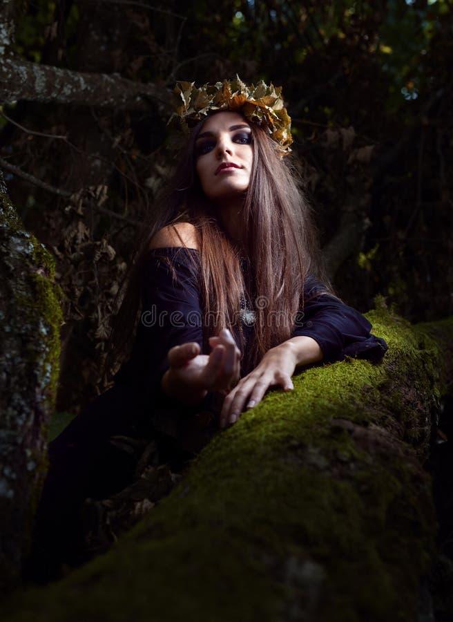 Heks in donker bos royalty-vrije stock fotografie