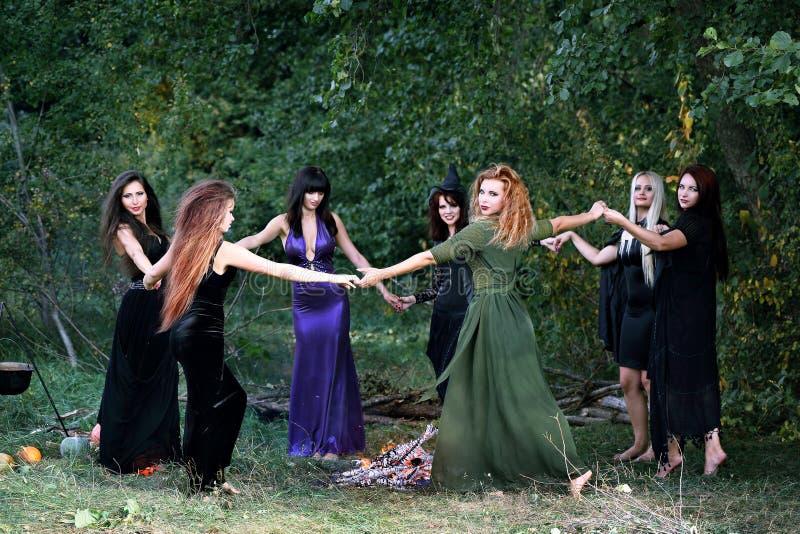 Heksen die in het bos dansen stock fotografie