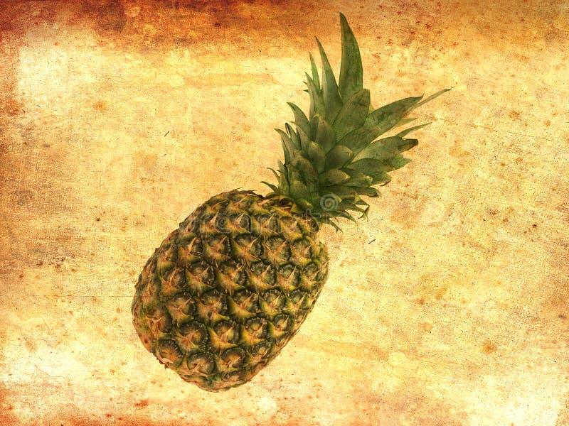 Hel ananas på gammal bakgrund för tappningpappersgrunge Bästa sikt, kopieringsutrymme royaltyfri bild