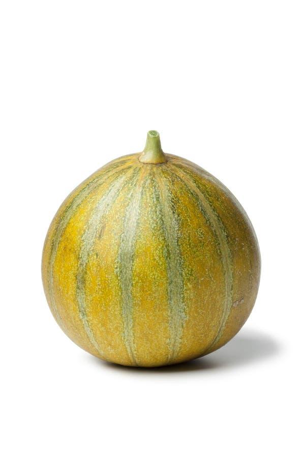 Hel enkel Ogen melon royaltyfri fotografi