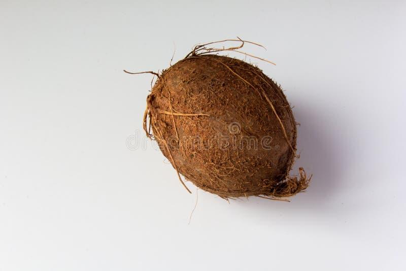 Hel kokosnöt på vit bakgrund fotografering för bildbyråer