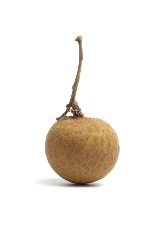 hel longan enkel stem för frukt arkivbilder