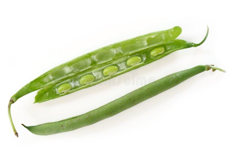 Hel och halv snittet det haricot vert, med kärnar ur, isolerat på vit royaltyfri fotografi
