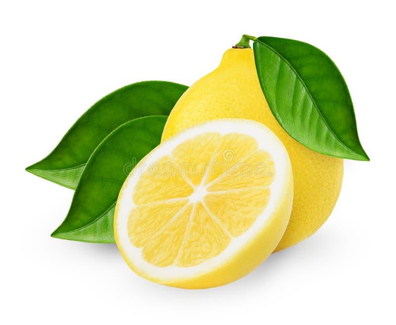 Hel och halverad citron med sidor Snabba banor för båda objekt och skuggor Oändligt djup av fältet royaltyfri foto