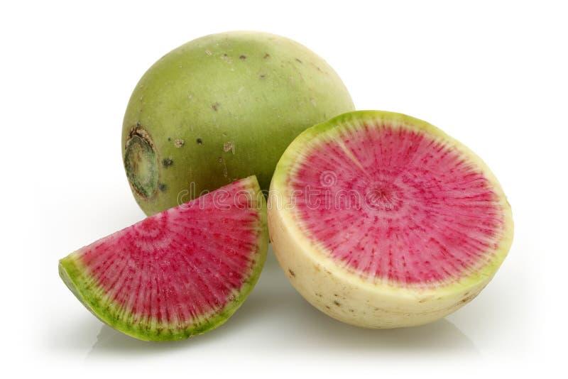 Hel och skivad vattenmelonrädisa royaltyfri bild
