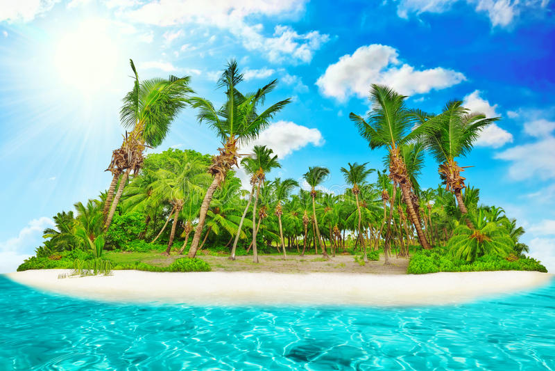 Hel tropisk ö inom atoll i det tropiska havet arkivbilder