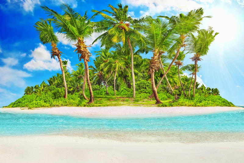 Hel tropisk ö inom atoll i Indiska oceanen royaltyfri bild