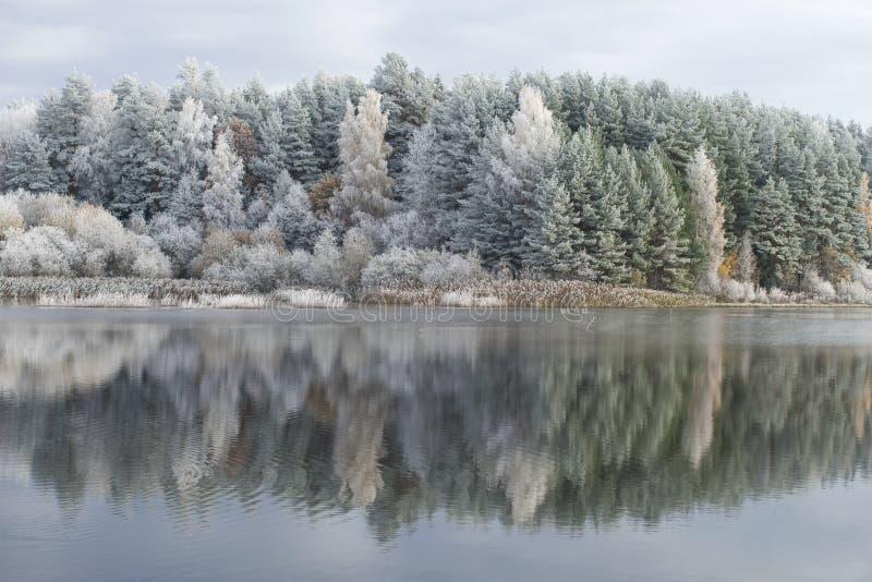 Helada de octubre en la charca del molino Pueblo de Bugrovo, montañas de Pushkin, Rusia fotografía de archivo libre de regalías