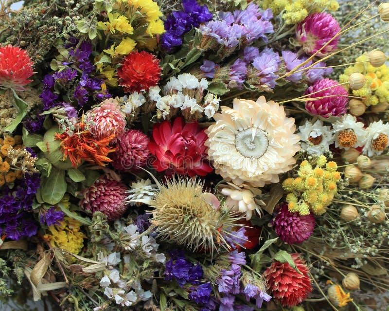 Helder boeket van bloemen Bloemengift De decoratie van de bloem Verschillende bloemenachtergrond Kleurrijke natuurlijke installat stock foto's