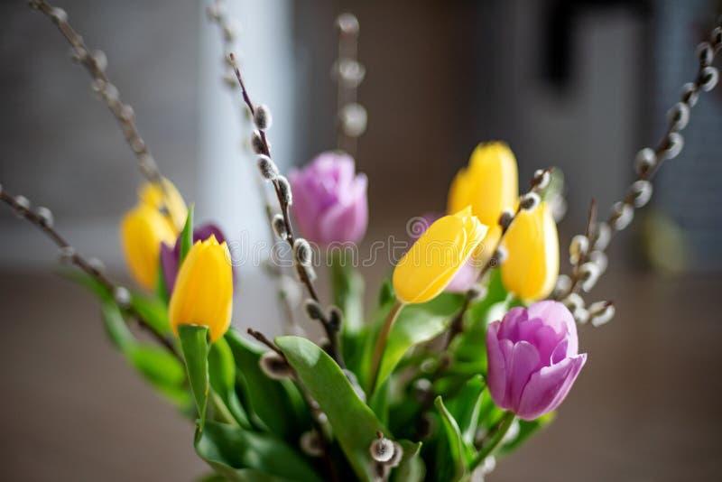 Helder de lenteboeket van gele en purpere tulpen en takkenpussy wilgen Pasen-regeling van verse bloemen royalty-vrije stock afbeeldingen
