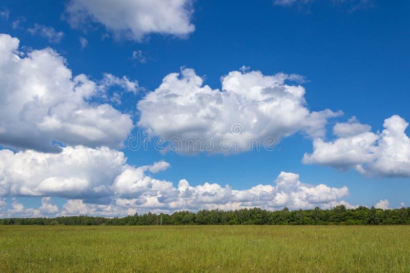 Helder de zomerlandschap met blauwe hemel Groene gebieden in het platteland Het Gebied van Moskou, Rusland stock fotografie
