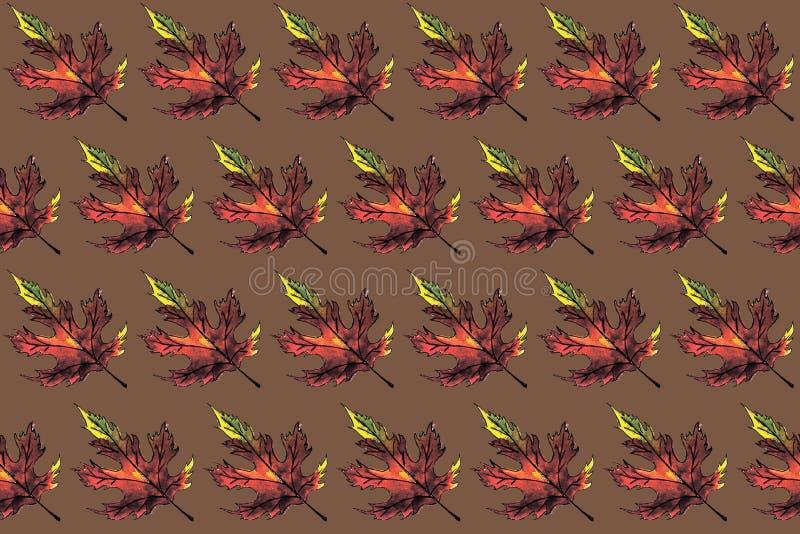 Helder geel van de de waterverfherfst van Bourgondië de esdoornblad dat over de bruine achtergrond van kraftpapier wordt geïsolee royalty-vrije illustratie