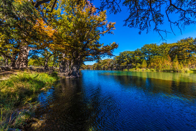 Helder Mooi Dalingsgebladerte op Crystal Clear Frio River royalty-vrije stock foto
