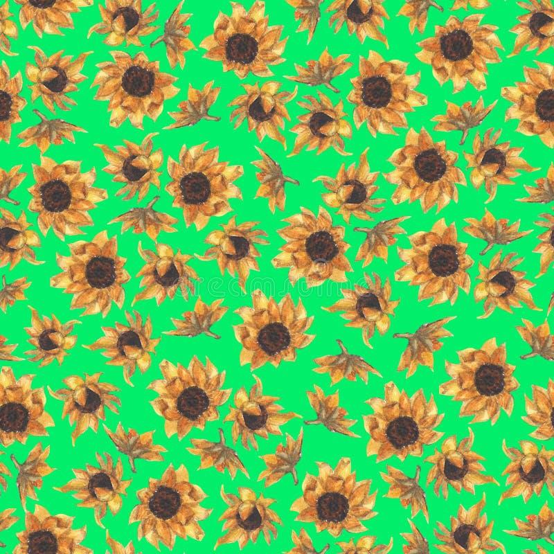 Helder naadloos patroon met zonnebloemen Hand getrokken waterverfbloemen stock foto's