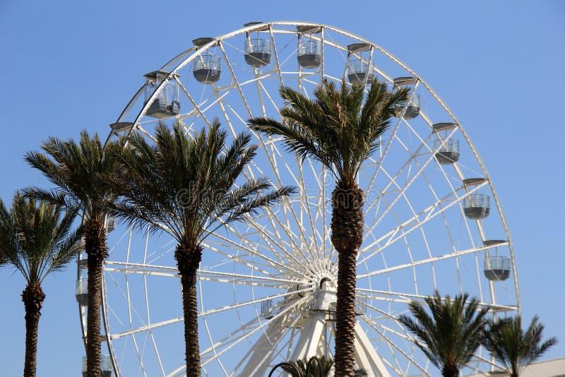 Heldere blauwe hemel en verscheidene palmen bij basis van Ferris Wheel, Oranje Strand, Alabama, 2018 stock afbeeldingen