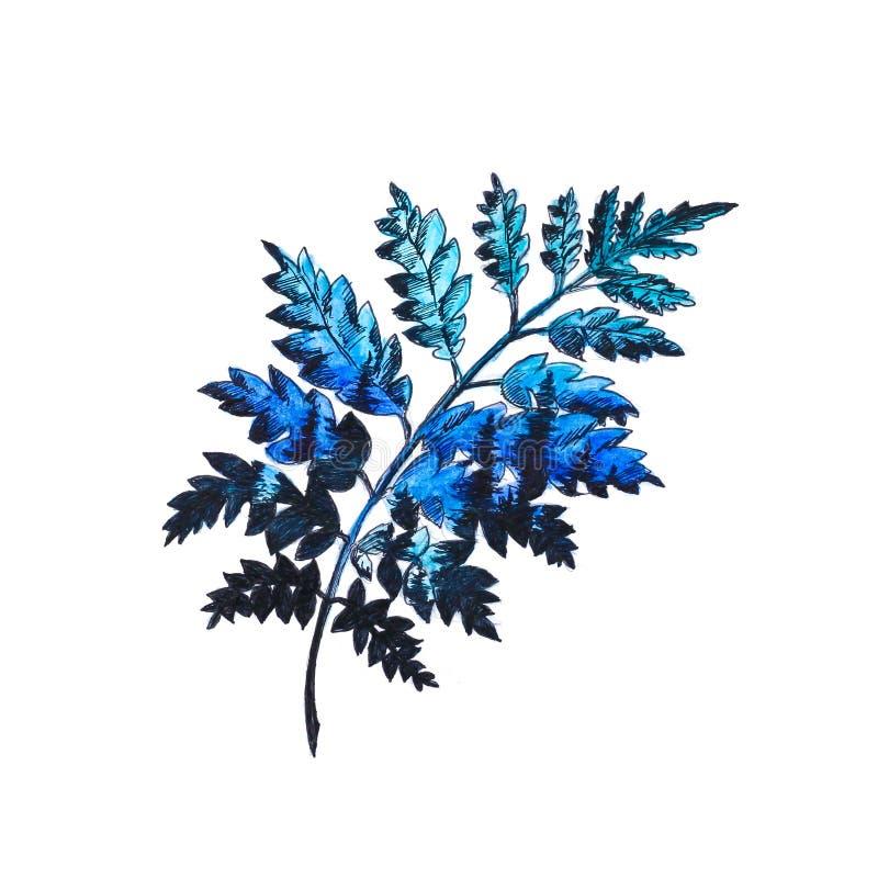 Heldere blauwe takjeboom Hand-drawn Een waterverftekening sluit vector illustratie