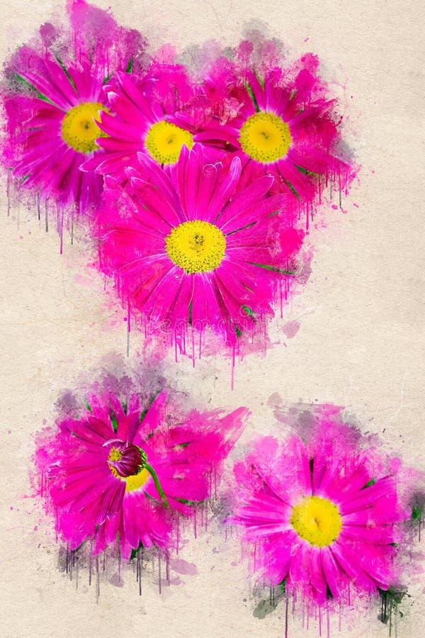 Heldere bloeiende roze Kamille in de tuin Acrylinkt royalty-vrije stock afbeelding