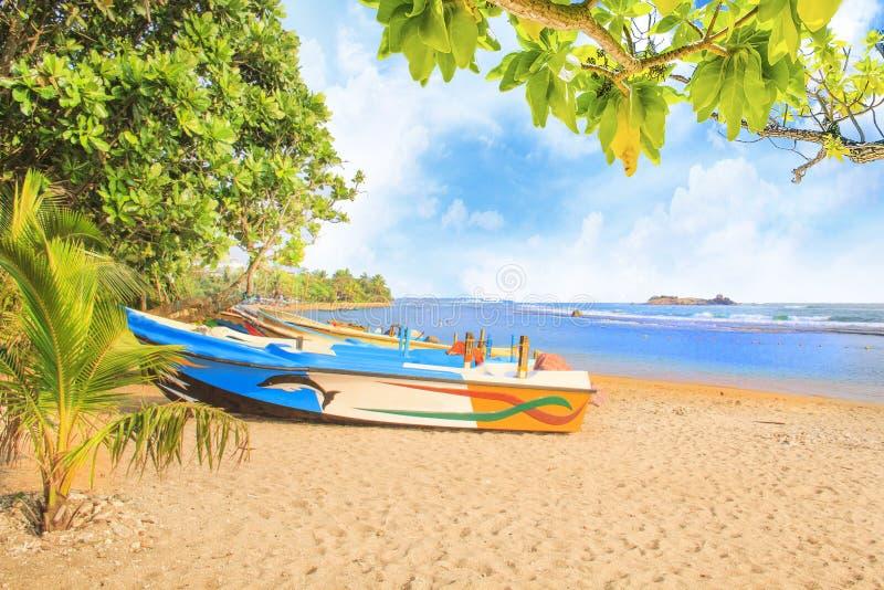 Heldere boten op het tropische strand van Bentota, Sri Lanka op een zonnige dag royalty-vrije stock afbeeldingen