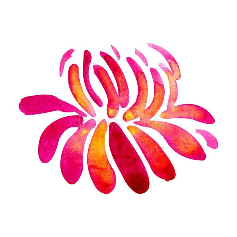 Heldere chrysant De illustratie van de waterverf Botanische waterverf Kan als achtergrond voor webpagina's, huwelijksuitnodiginge vector illustratie