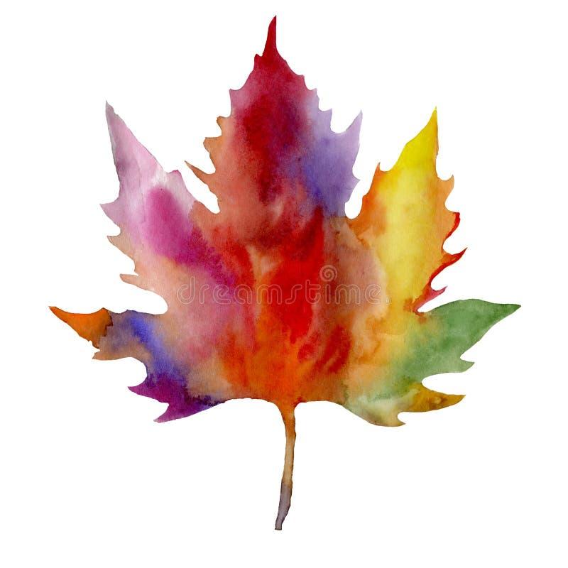 Heldere de herfstbladeren, waterverf, witte achtergrond vector illustratie