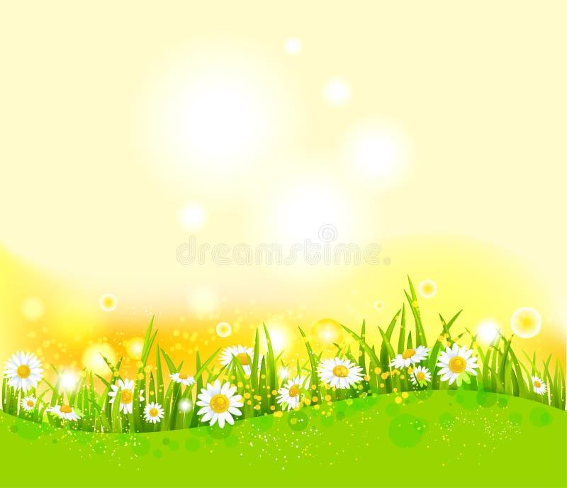 Heldere de zomerachtergrond vector illustratie