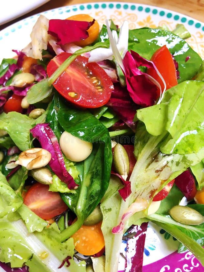 Heldere en Kleurrijke Salade stock fotografie