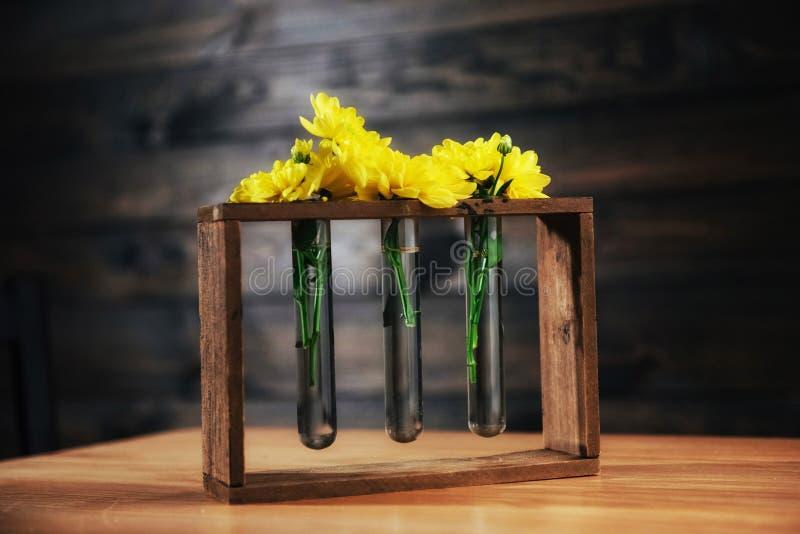 Heldere gele madeliefjes in een glasvaas op houten zwaard stock foto's