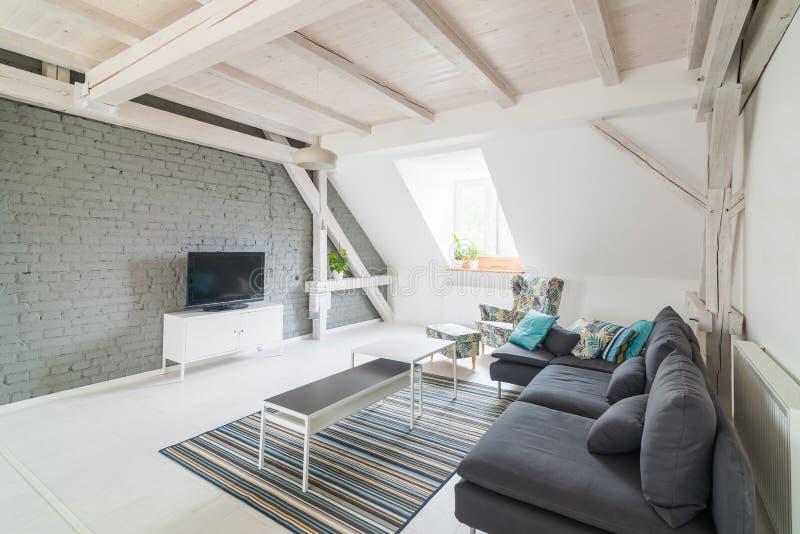 Heldere moderne woonkamer met televisietoestel en stoffenlaag stock afbeeldingen