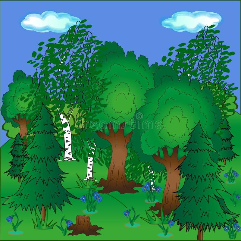 Heldere mooie bos mooie aard in de lente en blauwe sneeuwklokjes stock afbeelding