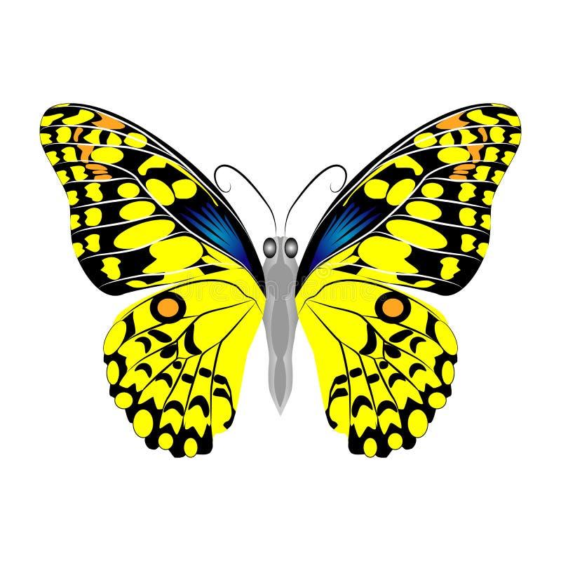 Heldere mooie gele vlinder Vector Geïsoleerdel illustratie stock illustratie