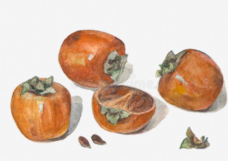 Heldere rijpe vitaminevruchten stock illustratie
