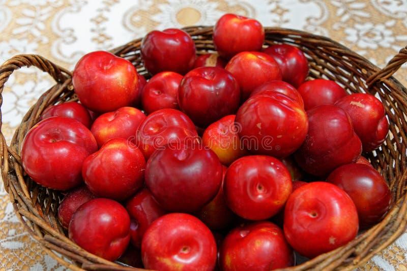 Heldere rode pruimen in een rode mand royalty-vrije stock afbeeldingen