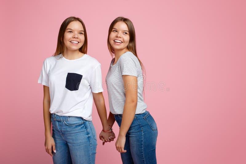 Heldere twee jonge tweelingzusters met mooie glimlachgang over roze achtergrond stock afbeelding