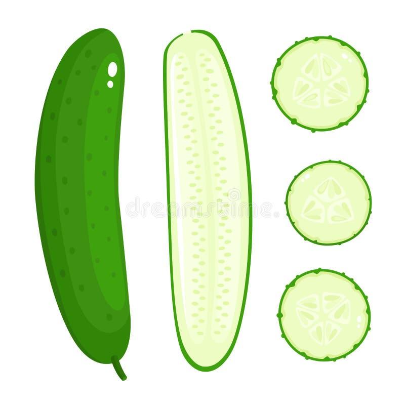 Heldere vectorinzameling van kleurrijke verschillende komkommer die op wit wordt geïsoleerd royalty-vrije illustratie