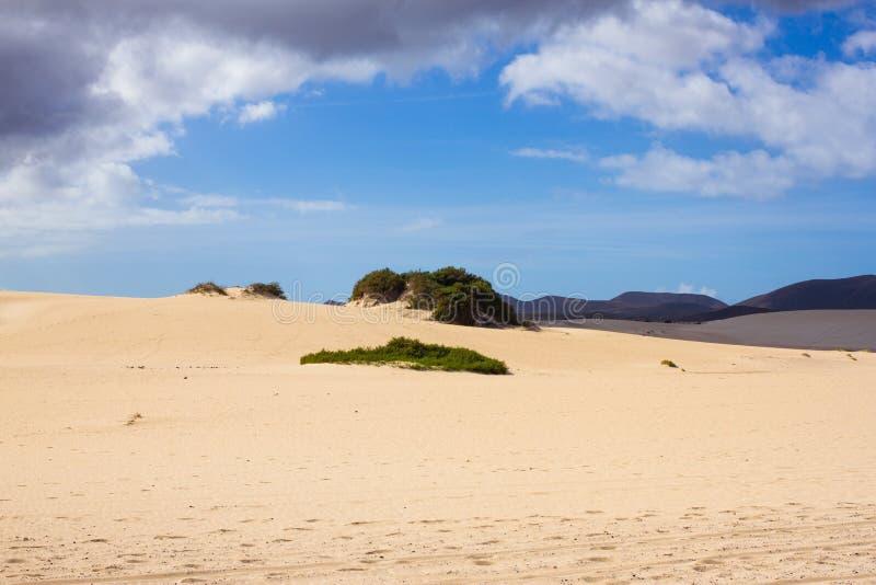 Heldere zand en hemel bij de achtergrond van de Atlantische Oceaan De duinen van de Sahara, schoonheids dorre achtergrond royalty-vrije stock fotografie