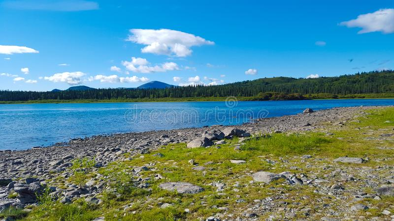 Heldere zonnige de zomerdag door het meer stock fotografie