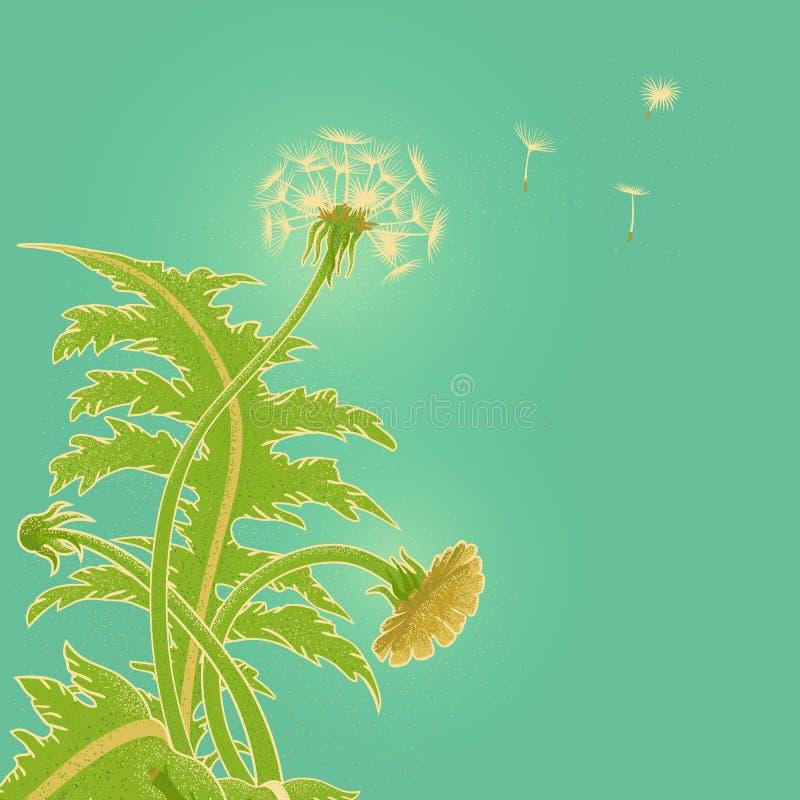 Heldere zonnige vectorillustratie van een gebied van paardebloem het groeien op de achtergrond van turkooise hemel Blowballvlieg  vector illustratie