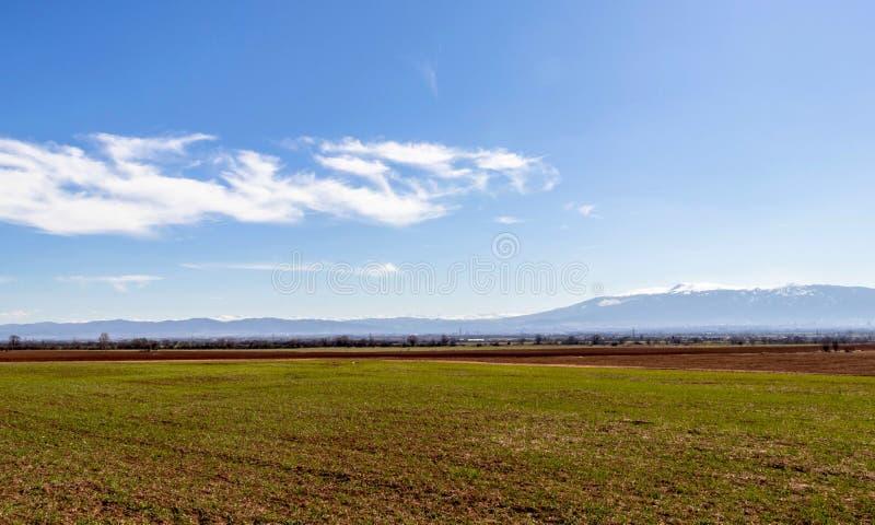 heldergroen gebied, mooie duidelijke blauwe hemel in witte onscherpe wolken, Bulgarije stock fotografie
