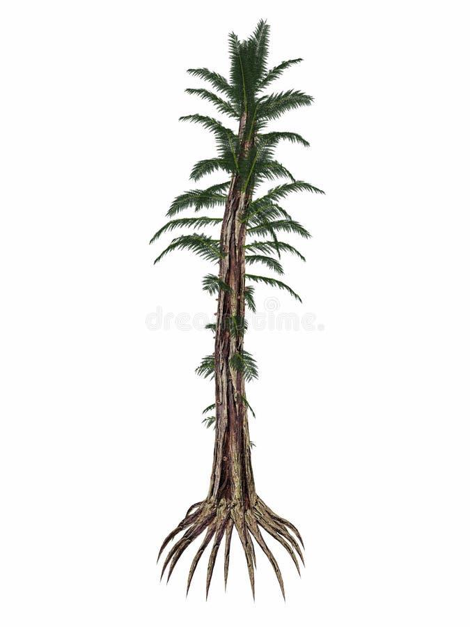 Helecho de árbol prehistórico de Tempskya - 3D rinden ilustración del vector