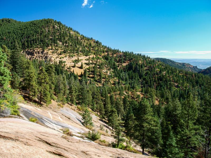 Forest along Trail above Helen Hunt Falls in Colorado stock photos
