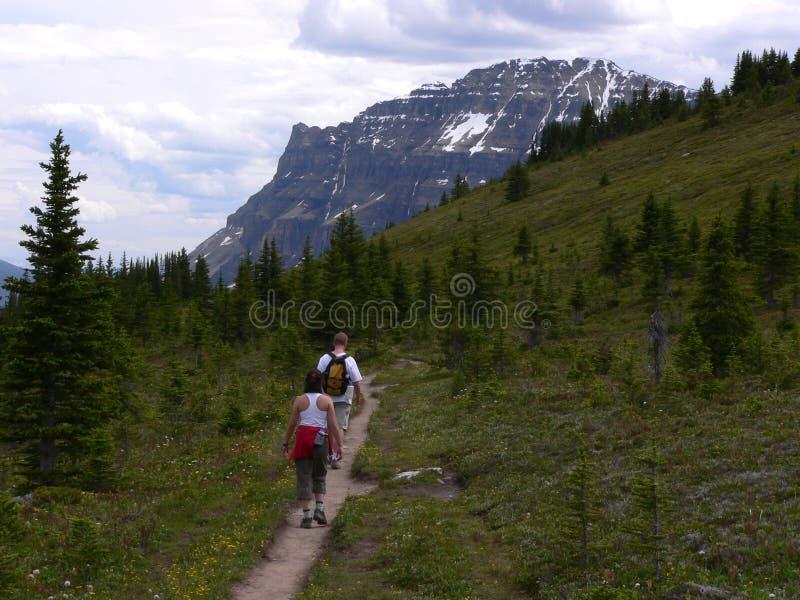 Download Helen Lake Trail stock photo. Image of peak, mountain, lake - 269820