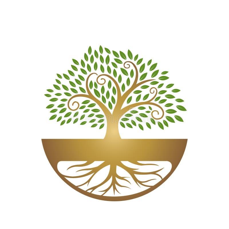 Helend het Bladpictogram van de Wortelboom royalty-vrije stock afbeelding