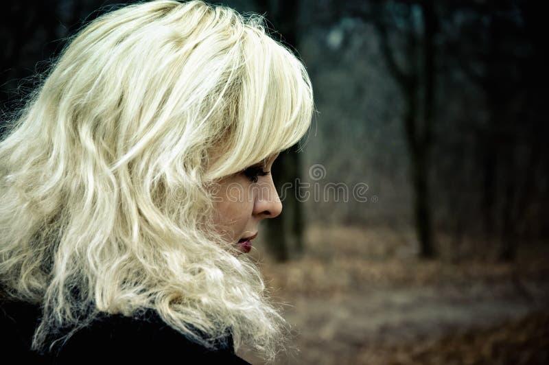 Helft-gezicht portret van mooie jonge blonde royalty-vrije stock afbeeldingen