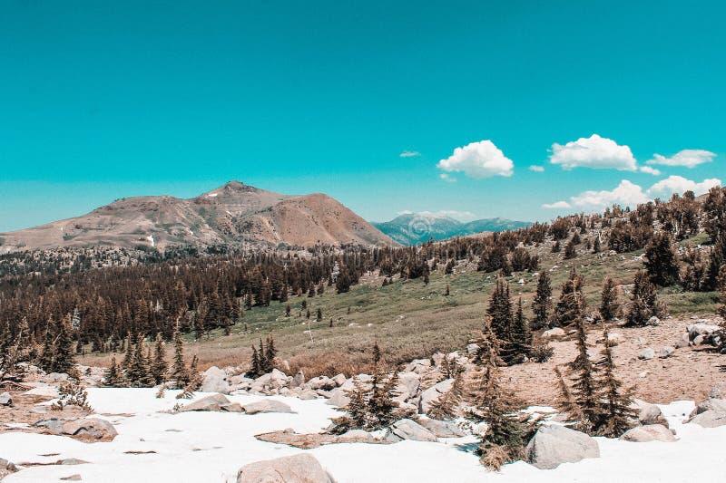 Helg i den Yosemite och eldoradonationalskogen arkivfoto
